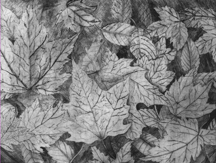 Forest Leaves etching