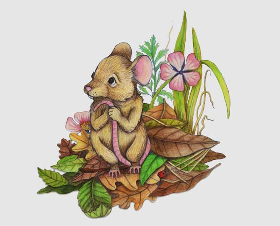 mouse in forest final low