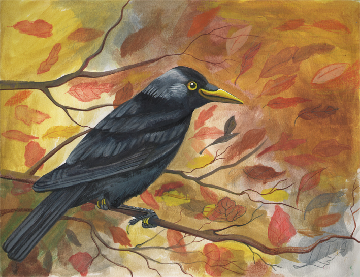 Crow sm