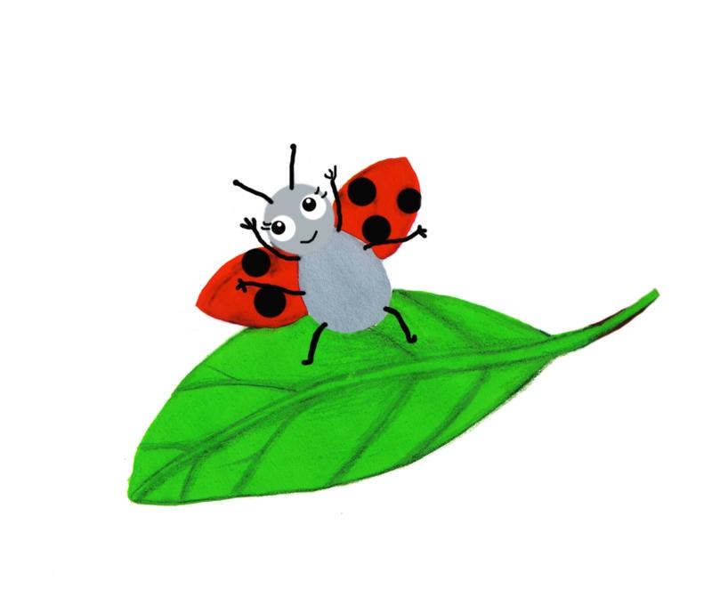 ladybird dancing