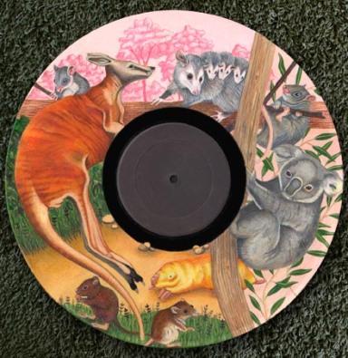 Marsupial recordv low